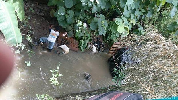 Pikap masuk sungai, 6 ekor kambing mati/