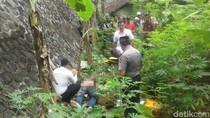 Pria Diduga Korban Pembunuhan Terkapar di Jurang Tasikmalaya