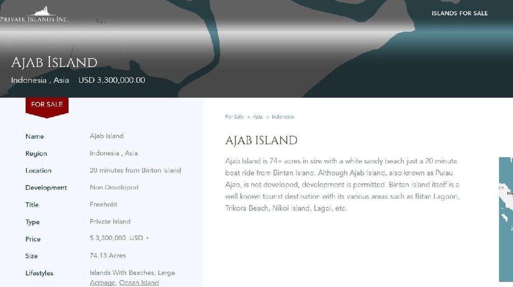 Pulau di RI Dijual Online, Kemenko Maritim: Kalau Sewa Boleh