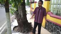 Di Trenggalek, Guiding Block Tabrak Pohon dan Tiang Listrik