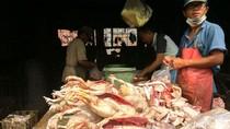 Harga Ayam Terus Naik dan Langka di Sidoarjo, Ini Penyebabnya
