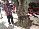 Guiding Block di Trenggalek Tabrak Pohon, Ini Kata Bupati Emil