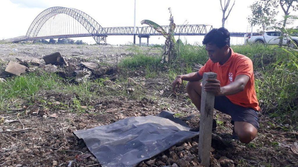Tragis! Orangutan di Kalteng Ditemukan Mati Tanpa Kepala