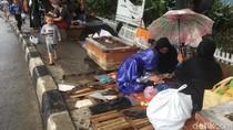 Hujan Reda, Para Pencari Suaka di Kalideres Kembali Tempati Trotoar