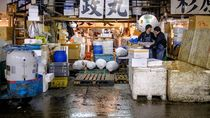 Intip Suasana Tsukiji Fish Market, Pasar Ikan Terbesar di Dunia