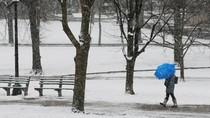 Badai Salju Bekukan AS Bagian Selatan, 4 Orang Tewas