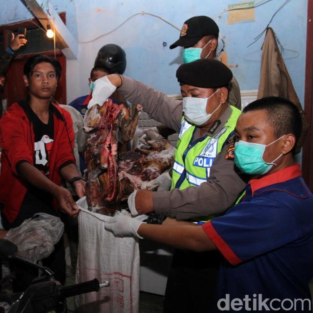 Polisi Gerebek Tempat Jagal Anjing di Baleendah Bandung
