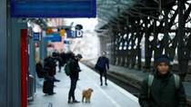 Badai Friederike Tewaskan 9 Orang di Eropa Utara