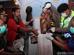 Polisi Gerebek Rumah Jagal Anjing di Bandung