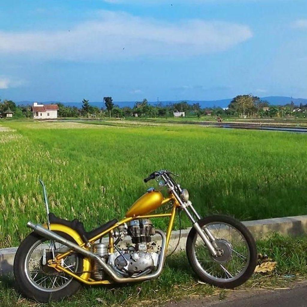 Akankah Jokowi Pakai Motor Chopper Emasnya dalam Kunjungan Kerja?