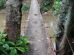 Uji Nyali Naik Jembatan Gantung di Srengseng Sawah