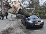 3 Orang Tewas Akibat Diterjang Badai Kencang di Belanda