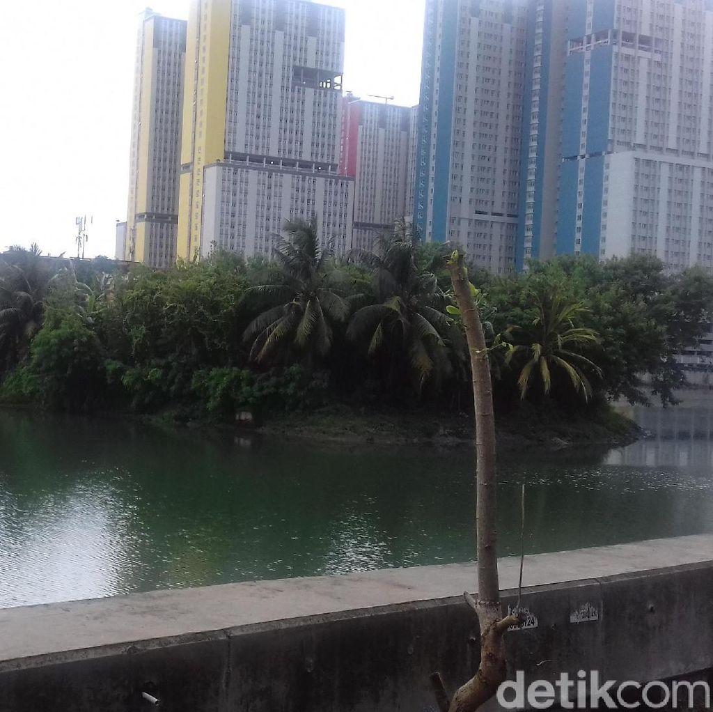Ini Danau Sunter Lokasi Ular Sanca Mistis Ditemukan dan Dilepas