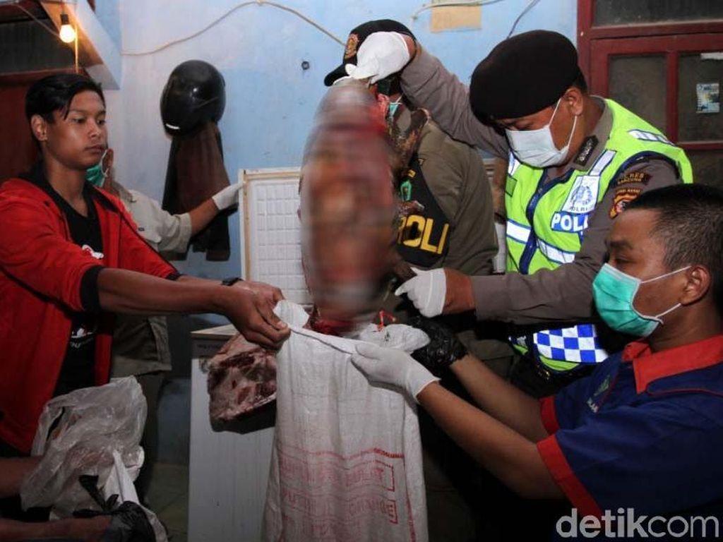 Anjing yang Dijagal di Baleendah Bandung Berasal dari Cianjur