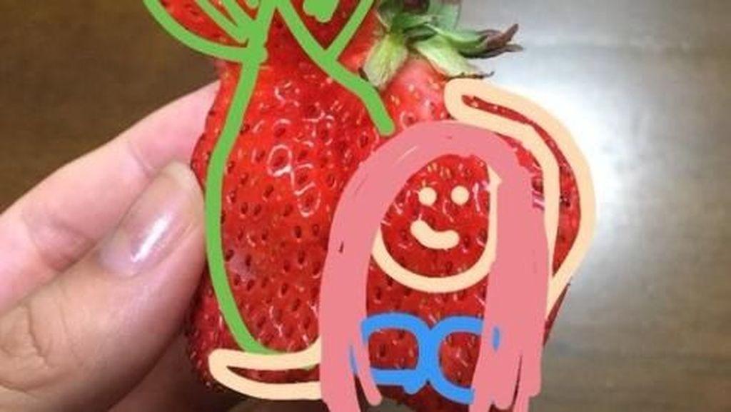 Kreatif! Netizen Ini Ubah Strawberry Cacat Jadi Unicorn, Putri Duyung hingga Gajah!