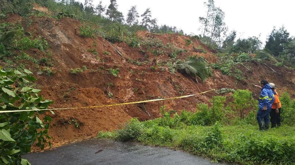 Longsor Trengglek Rusak Empat Hektare Hutan