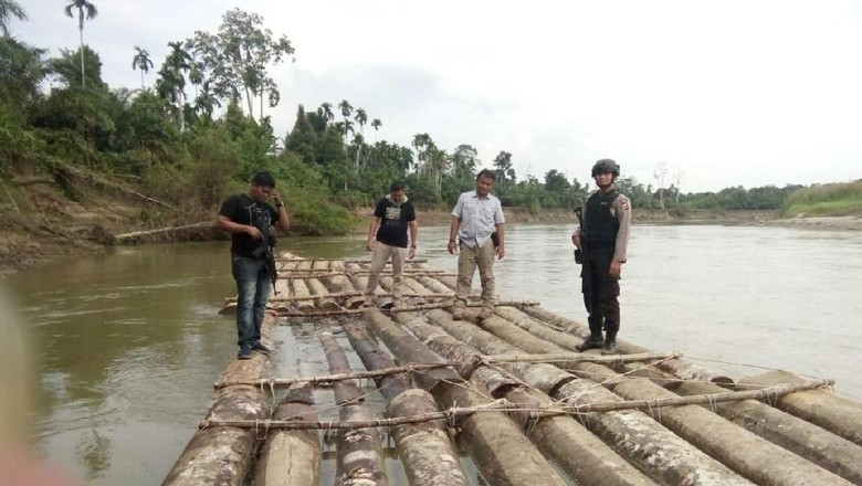 Puluhan Batang Kayu Ilegal Diamankan Tim Gabungan Polda Aceh