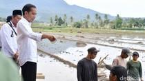 Jokowi Tinjau Padat Karya Tunai Bangun Irigasi di Lampung