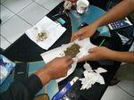 Polisi Selidiki Pelempar Ganja ke Lapas Nyomplong Sukabumi
