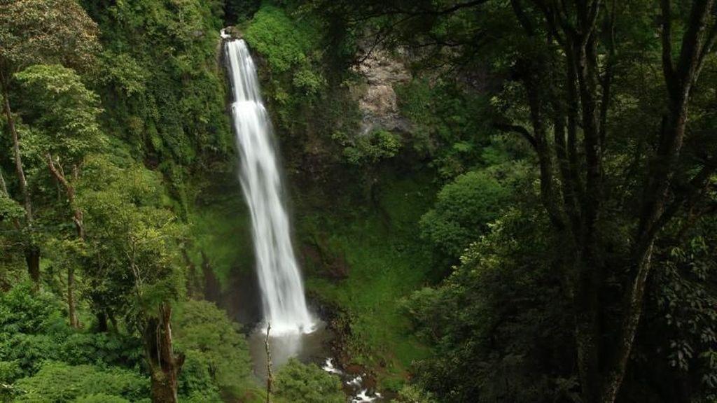 Cantiknya Curug Tertinggi di Jawa Barat