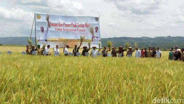 Mentan panen padi di Kudus