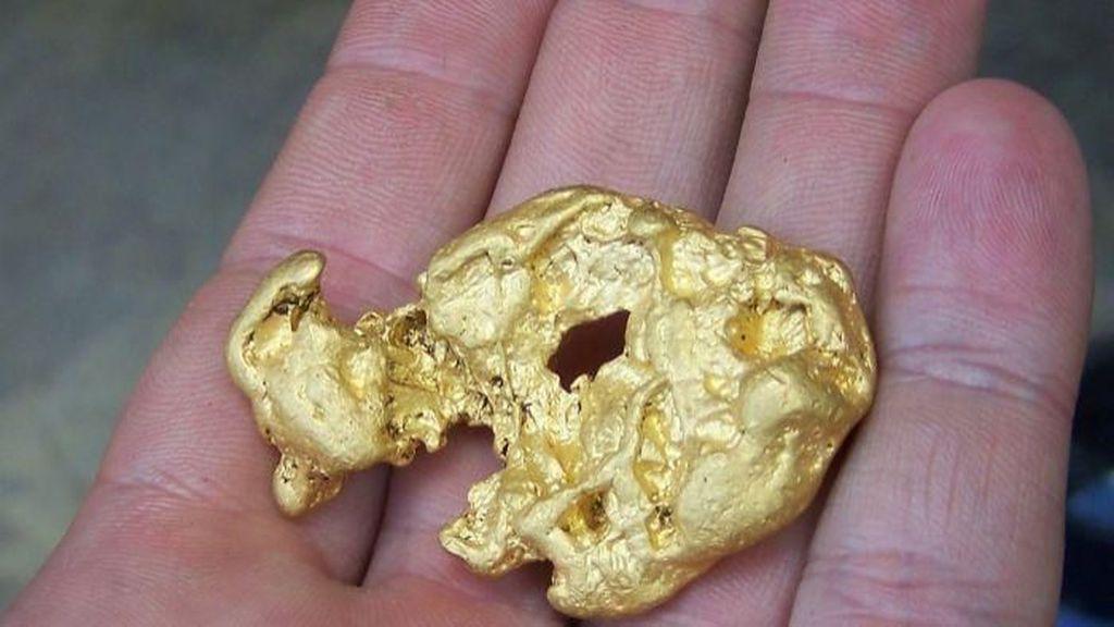 Ditemukan Bakteri Pendaur Ulang Emas