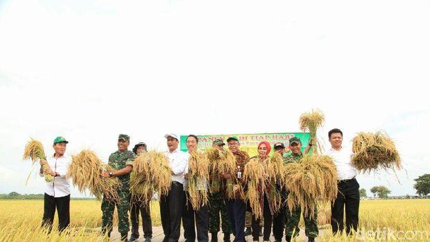 Mentan panen padi di Grobogan-Jateng
