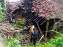 Antisipasi Gempa, Ini Pentingnya Dana Darurat Sampai Asuransi Jiwa