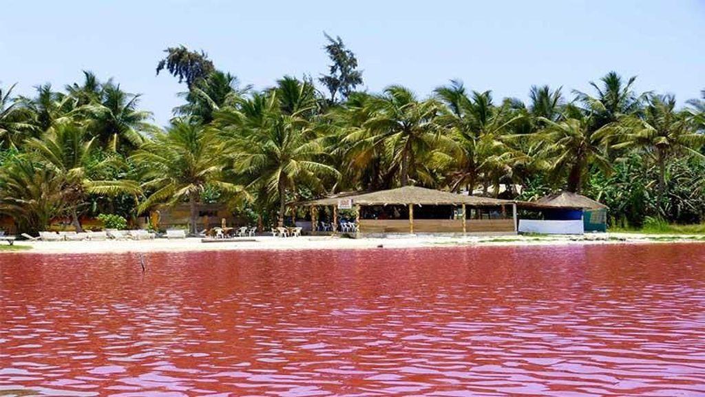 Foto: Tahu Danau Pink Ini Nggak?