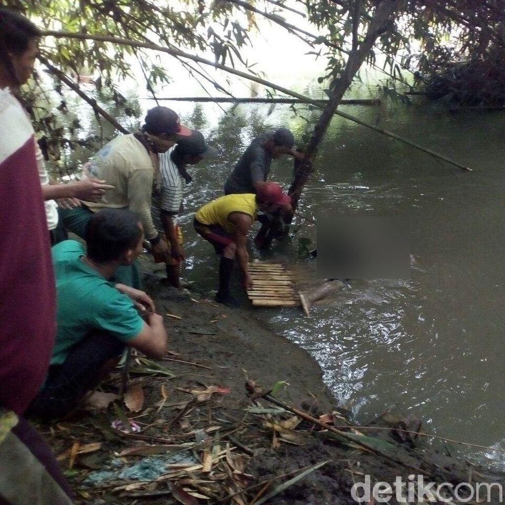Subandi Asal Jember Spesialis Penemu Mayat Tenggelam