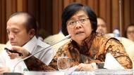 Menteri LHK Ingin Aset Pelaku Kejahatan Lingkungan Dijerat TPPU