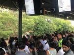 Aksi Mogok Pekerja Kereta Sydney Berlanjut, Jadwal Diprediksi Kacau