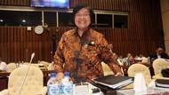 Menteri LHK Beberkan Hasil Atasi Ketimpangan Penguasaan Hutan