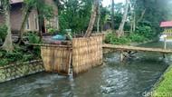 Duh, 190 Desa di Bondowoso Masih BAB Sembarangan