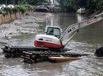 NasDem DKI: Titik Banjir Turun dari 1.000 Jadi 200 karena Normalisasi