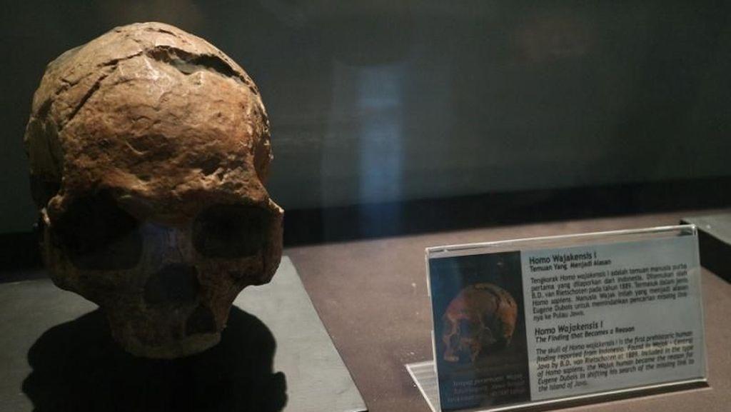 Koleksi Purba Indonesia Ada di Sini