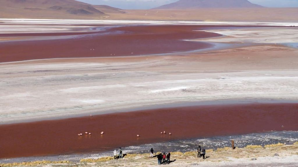 Foto: Padang Garam Aneh Tapi Nyata di Bolivia
