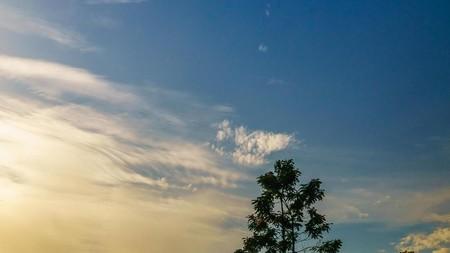 refleksi diri di pagi yang indah