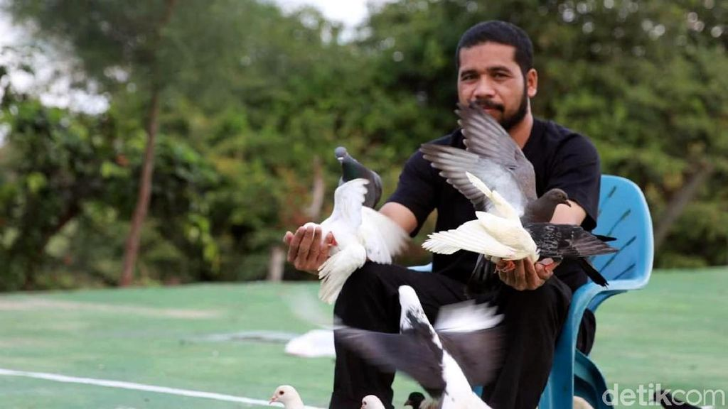 Bahagia di Aceh Itu Sederhana: Dihibur Ratusan Ekor Burung Dara