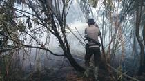 Buka Lahan Cabai dengan Cara Dibakar, Petani di Riau Ditangkap