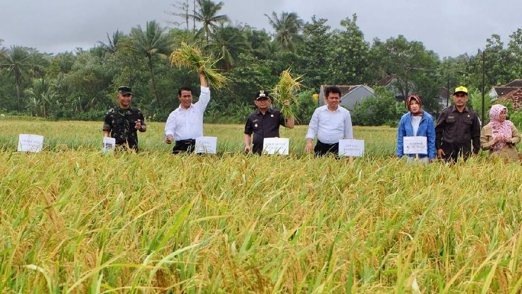 Genjot Investasi, Mentan Pangkas Aturan di Sektor Pertanian