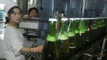 Mau Cicip? Katanya Bir dari Gandum Buatan Korea Utara Ini Rasa dan Aromanya Enak