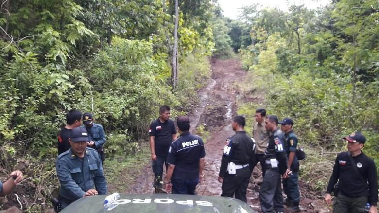 Illegal Logging, Pelaku Bikin Jalan 4 Km di Pedalaman Hutan Sulsel