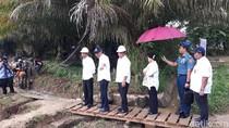 Mengenal Dharmasraya, Kabupaten yang Dikunjungi Jokowi