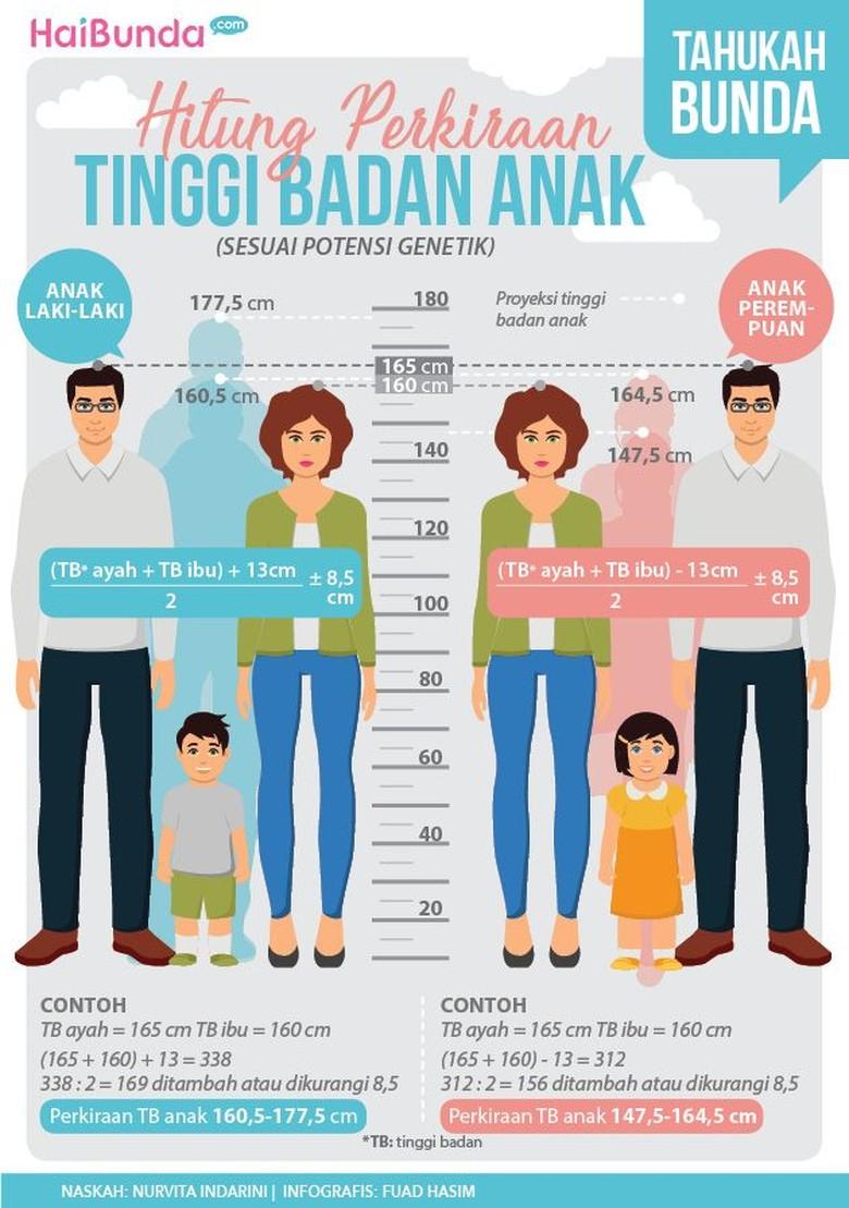 Rumus hitung perkiraan tinggi badan anak/ Foto: Tim Infografis