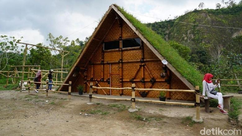 Foto: Rumah pohon Inyiak di Bukittinggi (Syanti Mustika/detikTravel)