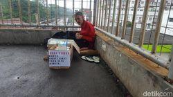 Mahasiswa Galang Donasi untuk Pak Deden Penjual Tisu yang Viral
