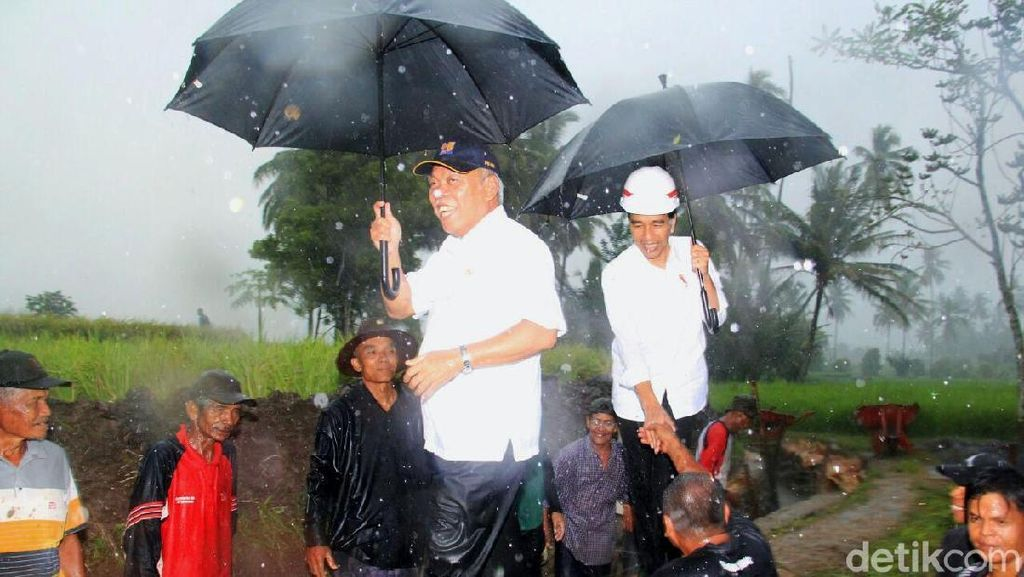 Jokowi Hujan-hujanan Pantau Pelaksanaan Program Padat Karya Cash