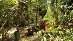 2 Penambang Ilegal di Kawasan Suaka Margasatwa Dangku Ditangkap