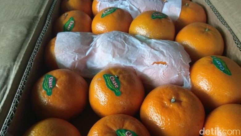 Pedagang di Kramat Jati: Jeruk Mandarin Kosong